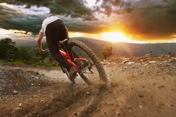 10 Top Brisbane Mountain Bike Trails For All Skill Levels