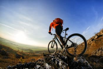 Mountain Bike or Road Bike
